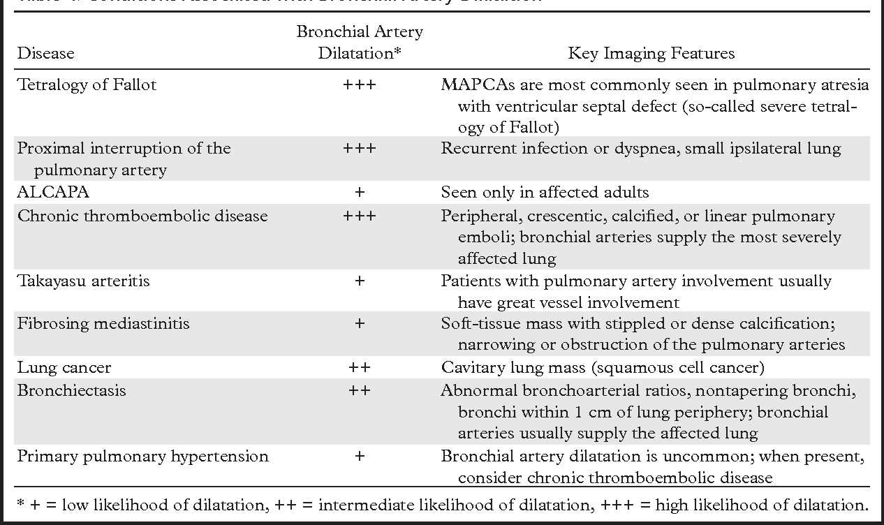 Bronchial Arteries Anatomy Function Hypertrophy And