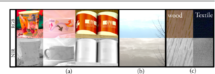 Figure 3 for Incorporating Near-Infrared Information into Semantic Image Segmentation