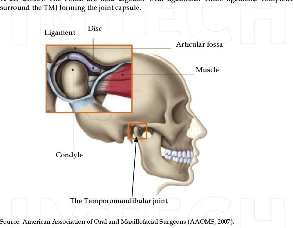Biomechanics Of The Temporomandibular Joint Semantic Scholar