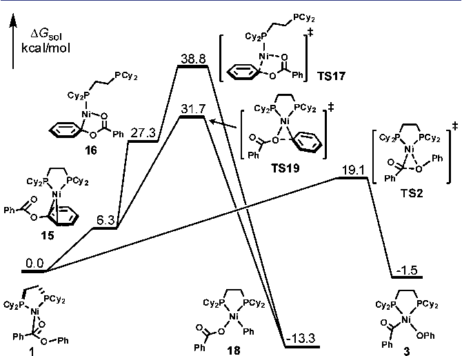 Figure 3 From Mechanisms And Origins Of Switchable Chemoselectivity