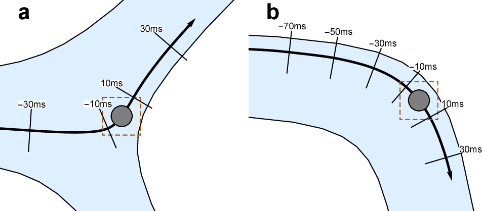 Figure 1 for Identifying Vessel Branching from Fluid Stresses on Microscopic Robots