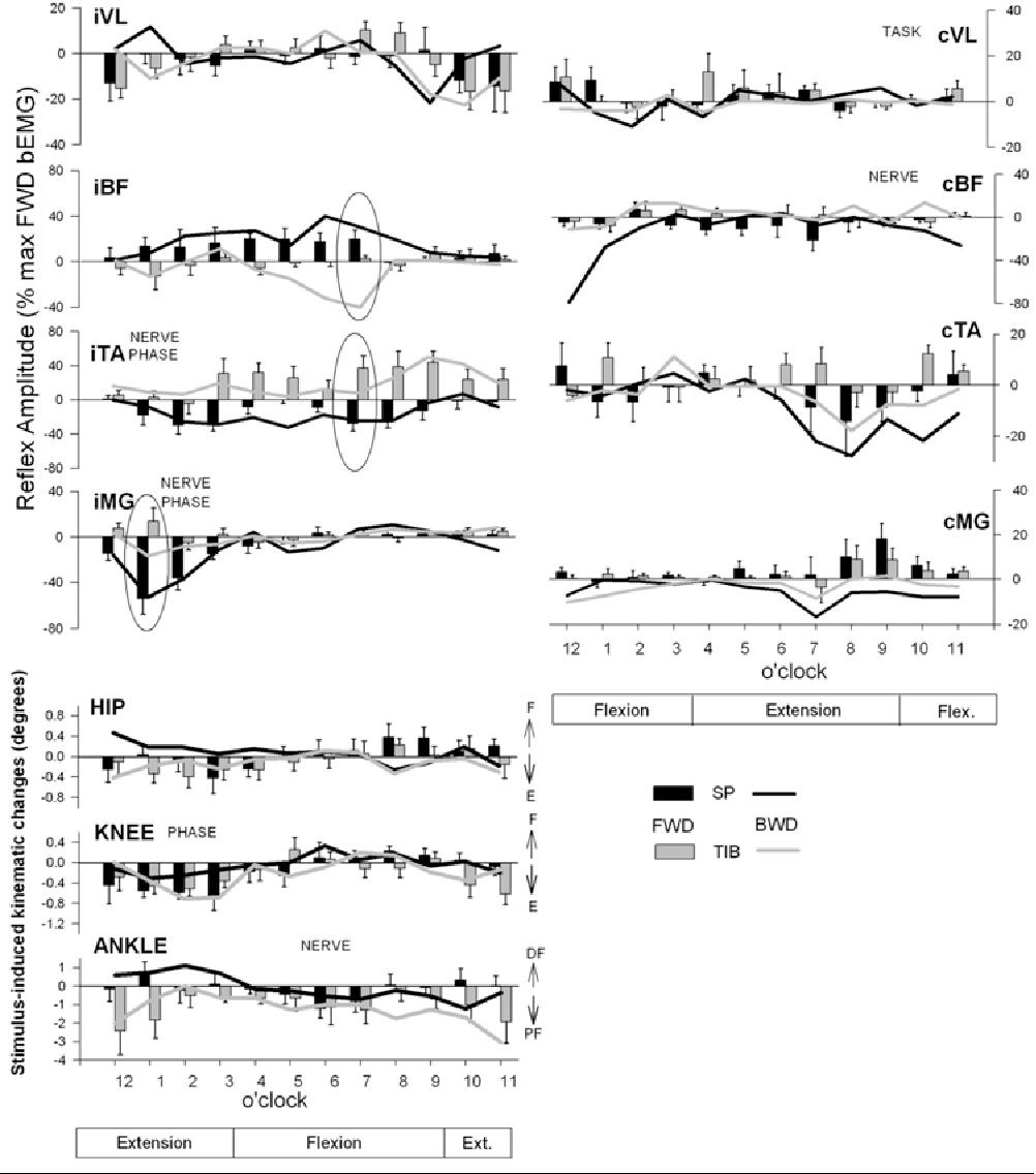 Figure 4 from Context-dependent modulation of cutaneous reflex