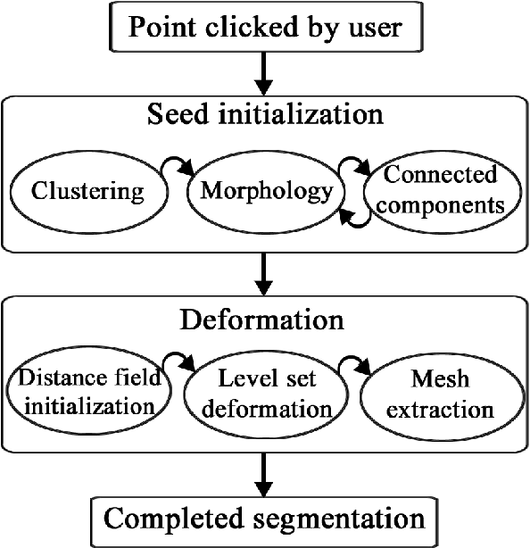 Figure 1 for A Fast, Semi-Automatic Brain Structure Segmentation Algorithm for Magnetic Resonance Imaging