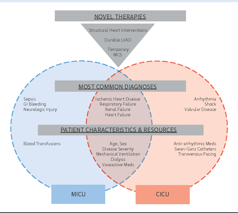 The Genesis, Maturation, and Future of Critical Care