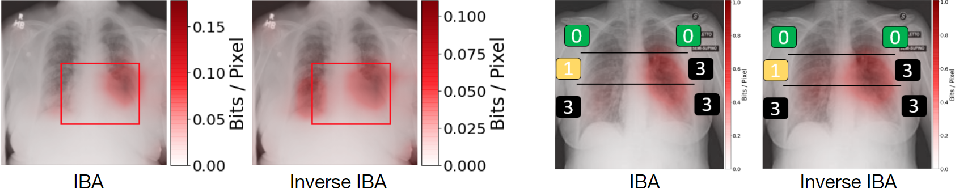 Figure 1 for Explaining COVID-19 and Thoracic Pathology Model Predictions by Identifying Informative Input Features
