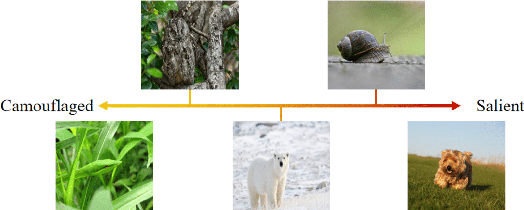 Figure 1 for Uncertainty-aware Joint Salient Object and Camouflaged Object Detection