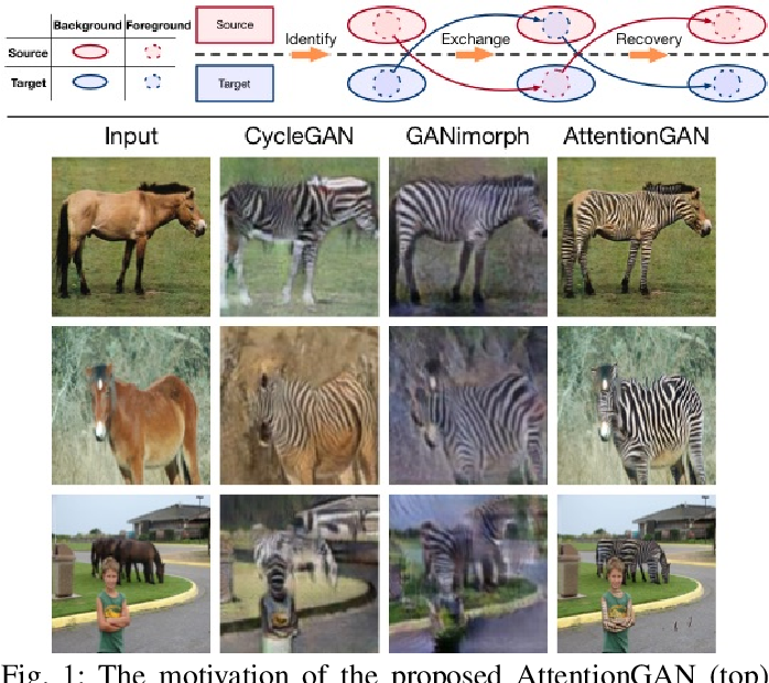 Figure 1 for AttentionGAN: Unpaired Image-to-Image Translation using Attention-Guided Generative Adversarial Networks