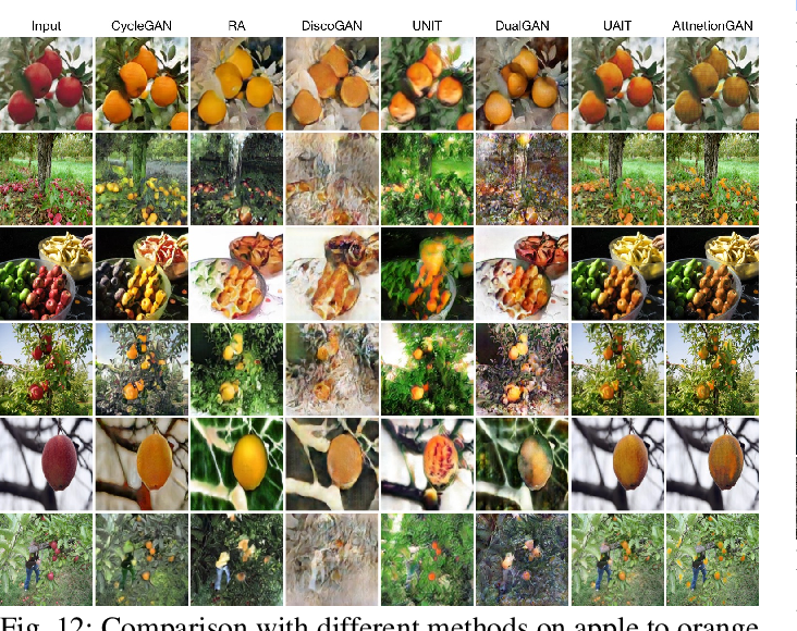 Figure 4 for AttentionGAN: Unpaired Image-to-Image Translation using Attention-Guided Generative Adversarial Networks