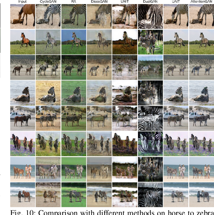 Figure 2 for AttentionGAN: Unpaired Image-to-Image Translation using Attention-Guided Generative Adversarial Networks
