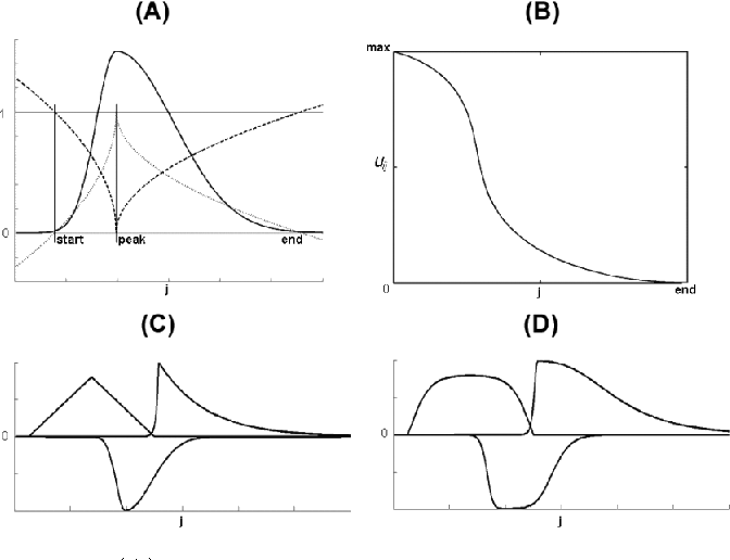 Fig. 2. (A) Illustration of the weighted learning rates for one of the M channels. (Solid, dashed and dotted lines indicate an example of an estimated SPP, and the corresponding