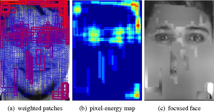 Figure 1 for Face Recognition using Optimal Representation Ensemble