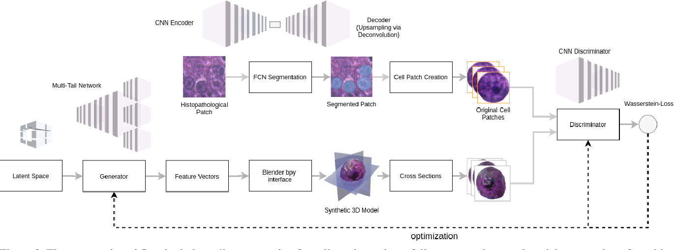 Figure 3 for Synthetic Generation of Three-Dimensional Cancer Cell Models from Histopathological Images