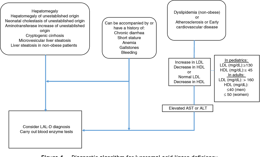 Figure 1 Diagnostic algorithm for lysosomal acid lipase deficiency.