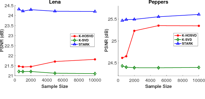 Figure 3 for STARK: Structured Dictionary Learning Through Rank-one Tensor Recovery