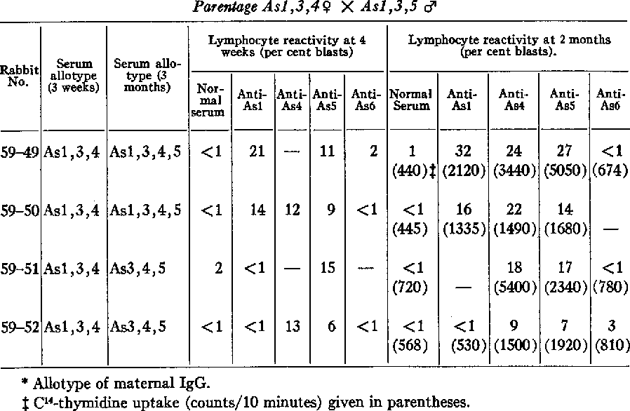 Table I from STUDIES ON RABBIT L YMPHOCYTES I N VITRO IV