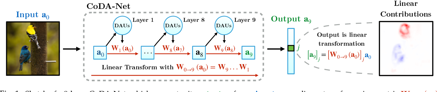 Figure 1 for Optimising for Interpretability: Convolutional Dynamic Alignment Networks
