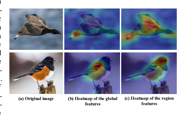 Figure 1 for Stacked Semantic-Guided Attention Model for Fine-Grained Zero-Shot Learning