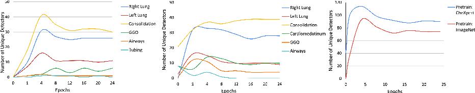 Figure 4 for Towards Semantic Interpretation of Thoracic Disease and COVID-19 Diagnosis Models