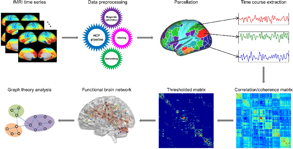 Figure 1 for Frequency-specific segregation and integration of human cerebral cortex: an intrinsic functional atlas