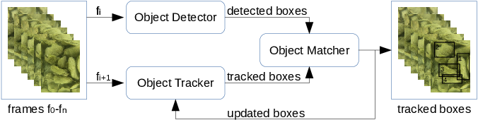 Figure 1 for Detecting and Counting Oysters