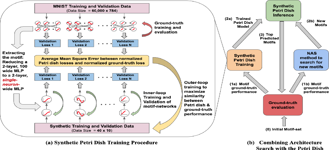 Figure 3 for Synthetic Petri Dish: A Novel Surrogate Model for Rapid Architecture Search