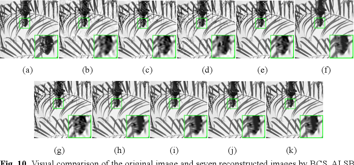 Figure 2 for Nonconvex Nonsmooth Low-Rank Minimization for Generalized Image Compressed Sensing via Group Sparse Representation