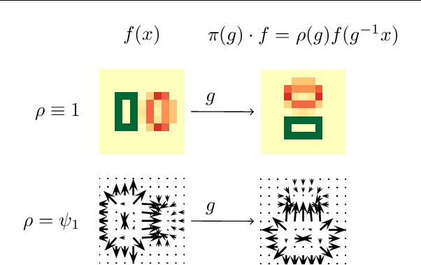 Figure 1 for FILTRA: Rethinking Steerable CNN by Filter Transform