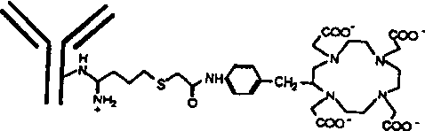 Figure 4. Structural formulas of some metal chelates conjugated to monoclonal antibodies.