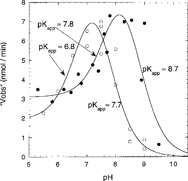 Figure 5 from Studies with lysine N6-hydroxylase  Effect of