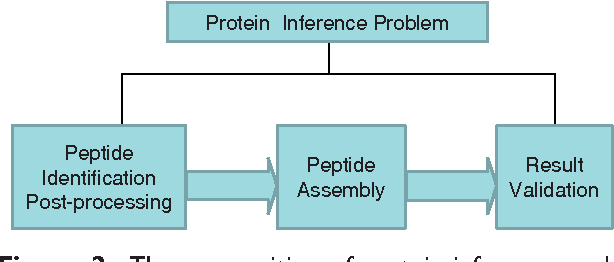 Figure 2: The composition of protein inference problem. It consists of three steps: peptide identification post-processing, peptide assembly and result validation.