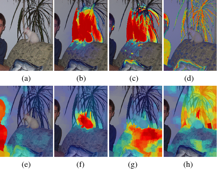Figure 1 for Backtracking Spatial Pyramid Pooling (SPP)-based Image Classifier for Weakly Supervised Top-down Salient Object Detection
