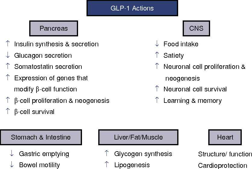 Figure 2 from Clinical endocrinology and metabolism