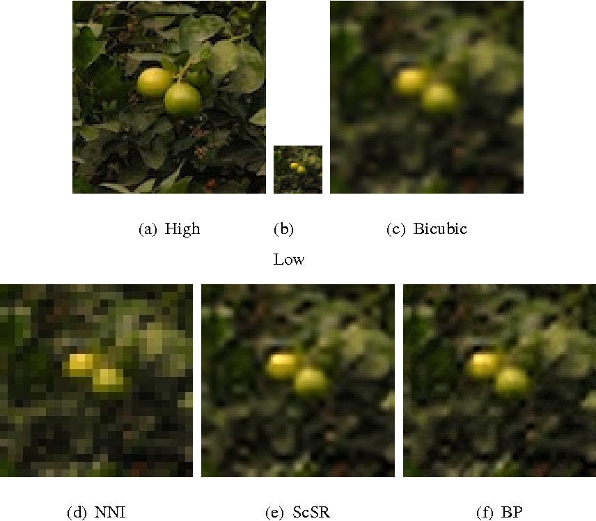 Figure 2 for A Bayesian Nonparametric Approach to Image Super-resolution