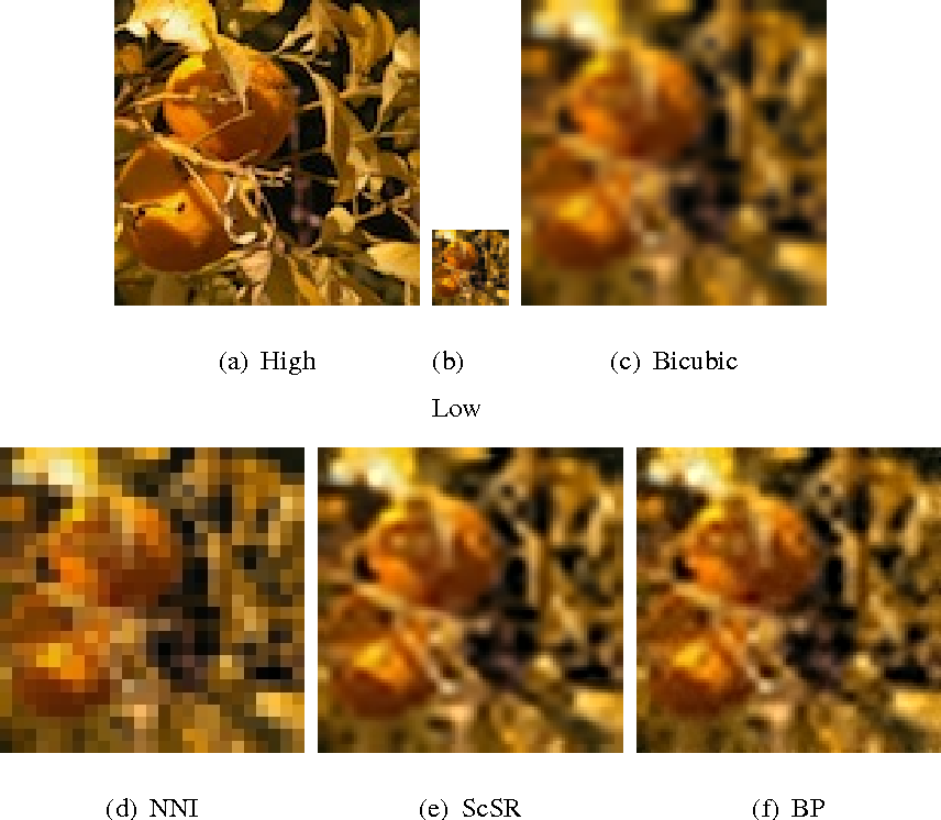 Figure 3 for A Bayesian Nonparametric Approach to Image Super-resolution