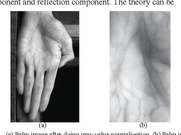 Figure 1 for A single scale retinex based method for palm vein extraction