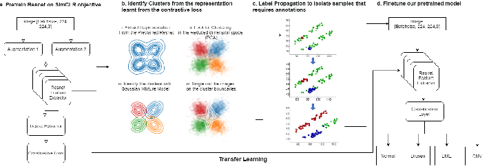 Figure 1 for SISE-PC: Semi-supervised Image Subsampling for Explainable Pathology