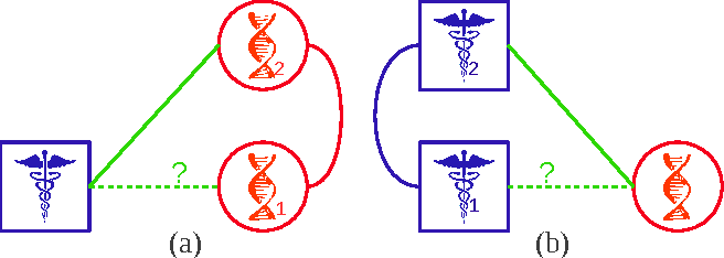 Fig. 2: Propagation via triads. Similar targets tend to interact with the same drug (a), and similar drugs tend to interact with the same target (b).