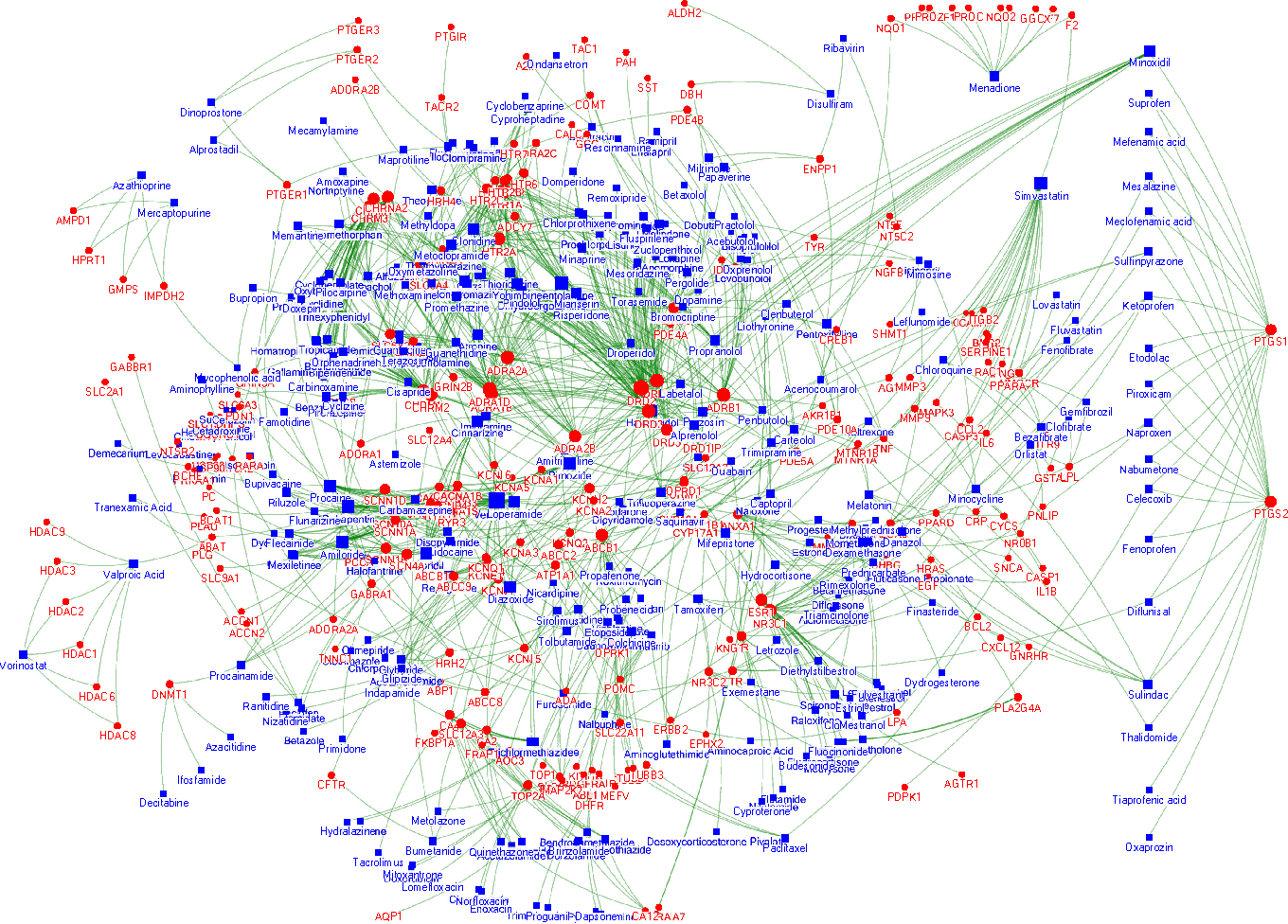 Fig. 7: Network of drug-target interactions in the dataset. Drugs are shown with blue squares and targets with red circles, where size of the node represent their degree. Similarities are not shown to simplify the graph.