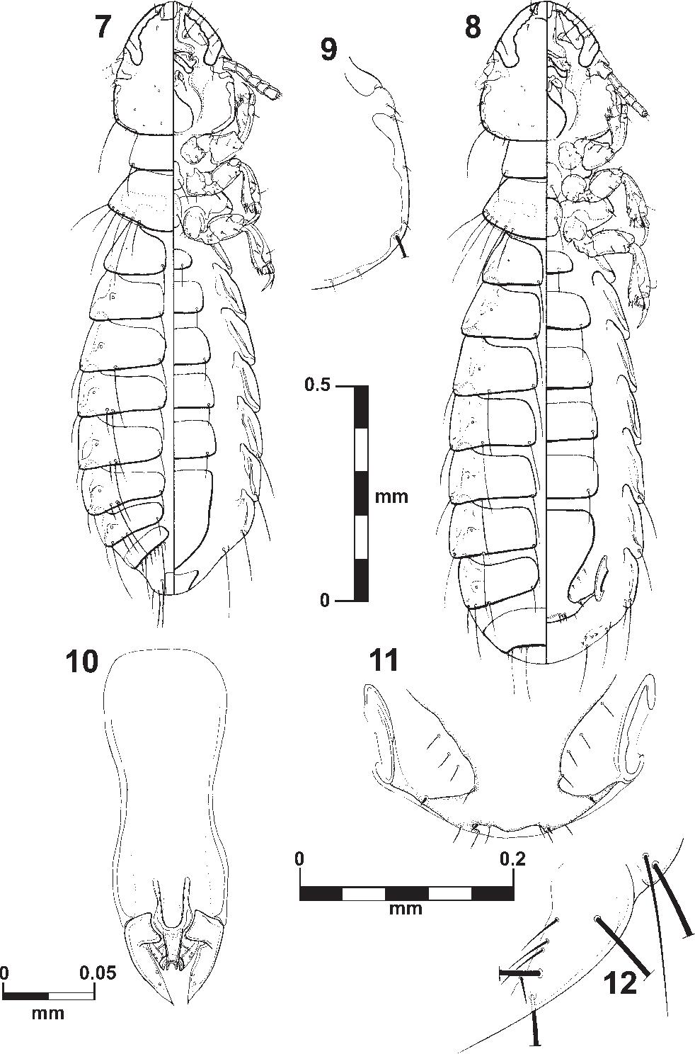 figure 7–12