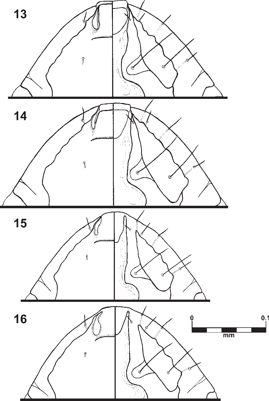 figure 13–16