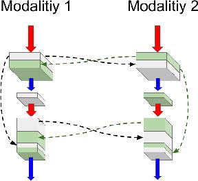 Figure 3 for Dense Multi-path U-Net for Ischemic Stroke Lesion Segmentation in Multiple Image Modalities