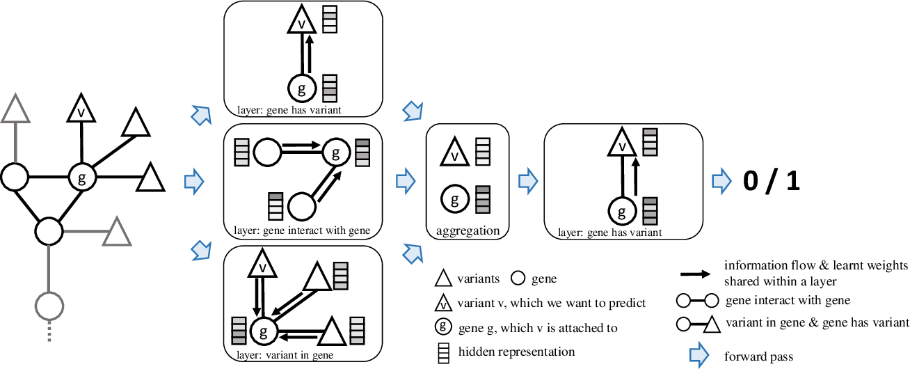 Figure 1 for VEGN: Variant Effect Prediction with Graph Neural Networks