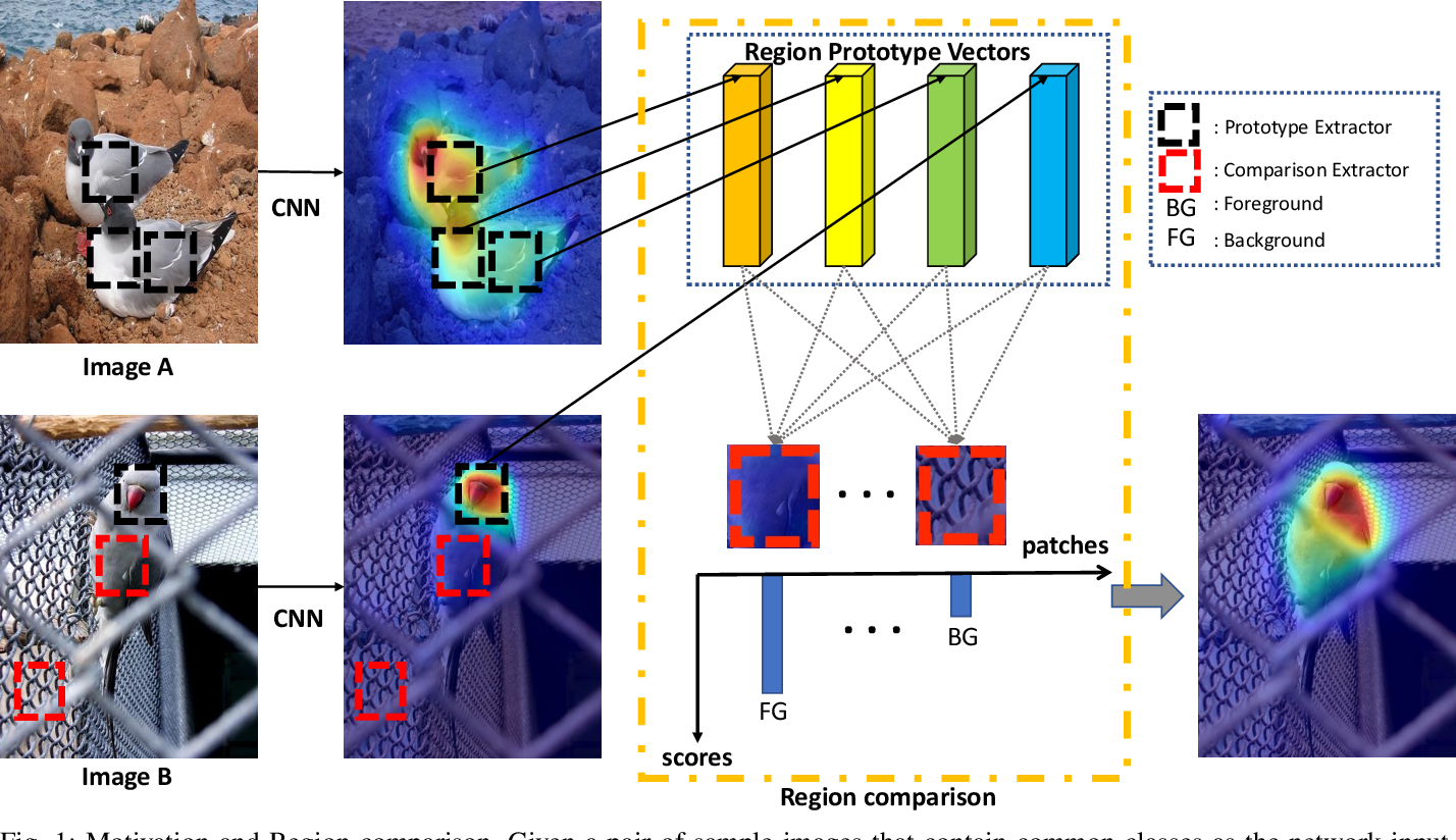 Figure 1 for Cross-Image Region Mining with Region Prototypical Network for Weakly Supervised Segmentation