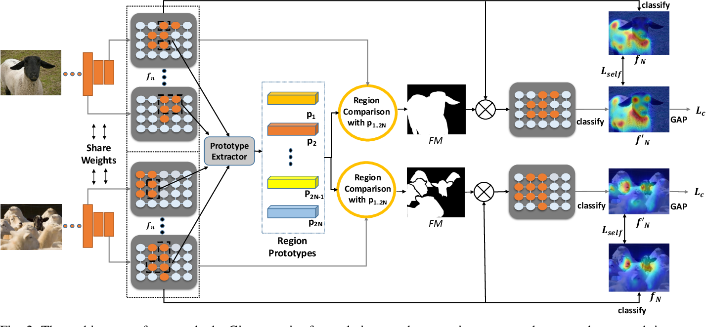 Figure 2 for Cross-Image Region Mining with Region Prototypical Network for Weakly Supervised Segmentation