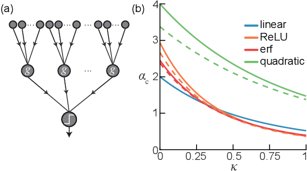 Figure 1 for Activation function dependence of the storage capacity of treelike neural networks