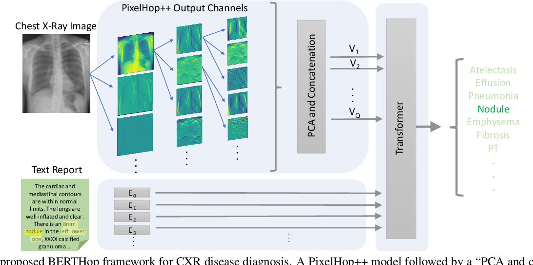 Figure 3 for BERTHop: An Effective Vision-and-Language Model for Chest X-ray Disease Diagnosis