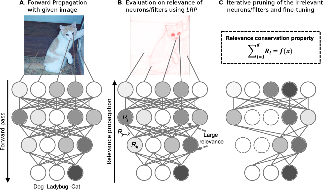Figure 1 for Pruning by Explaining: A Novel Criterion for Deep Neural Network Pruning