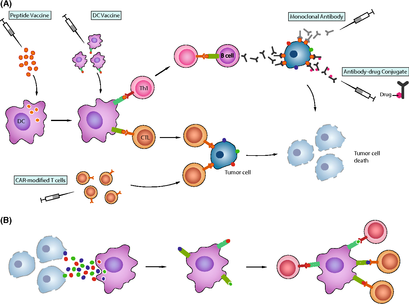 Glioblastoma antigen discovery—foundations for immunotherapy