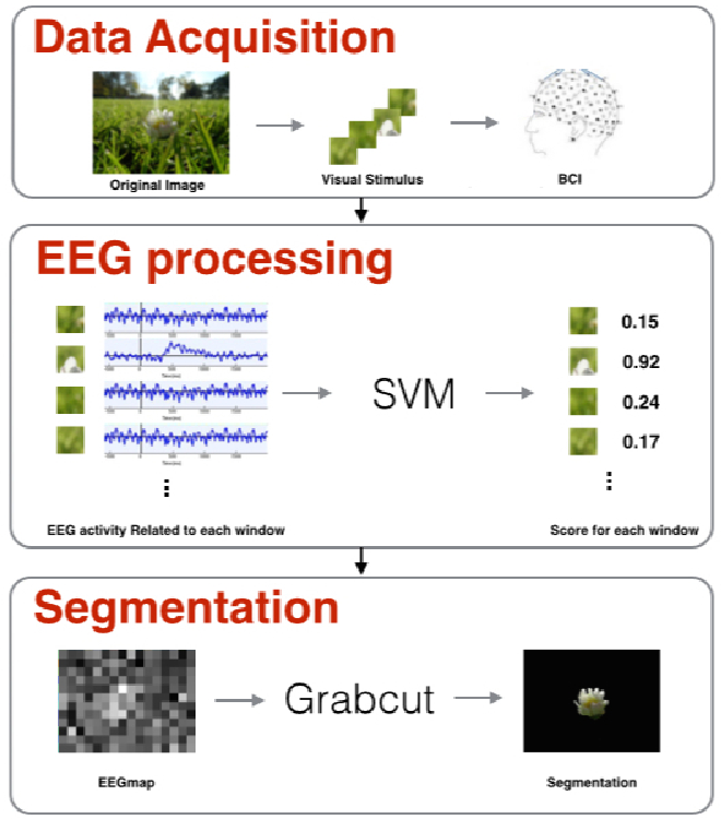 Figure 1 for Object Segmentation in Images using EEG Signals