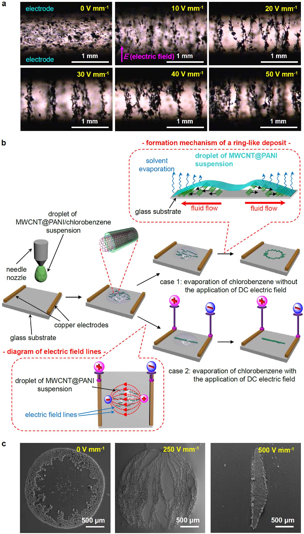 Figure 1 | Fabrication of MWCNT@PANI pattern under DC electric field. (a) Optical microscope images of aligned polyaniline-coated multi-walled carbon nanotube (MWCNT@PANI) between two electrodes after application of DC electric fields (gap between electrodes: 1.5 mm, concentration